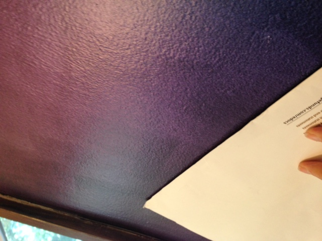 "Chameleon Faux Finish wall from the ""Purple Angle""."