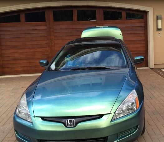 blue green purple chameleon 4779BG on honda